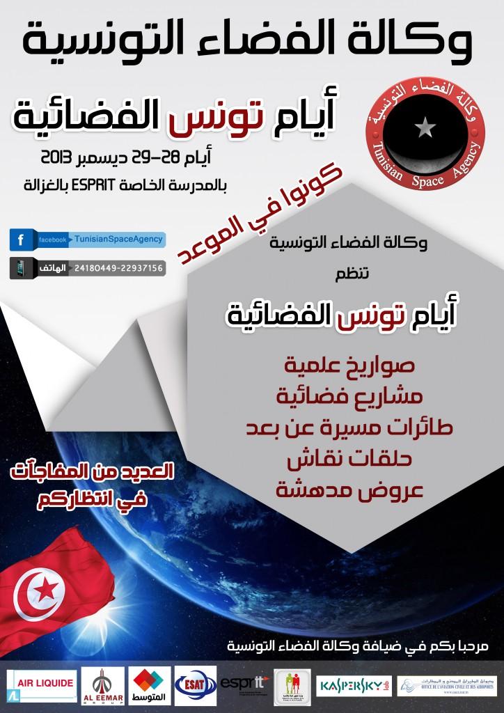 TSD_2013_poster